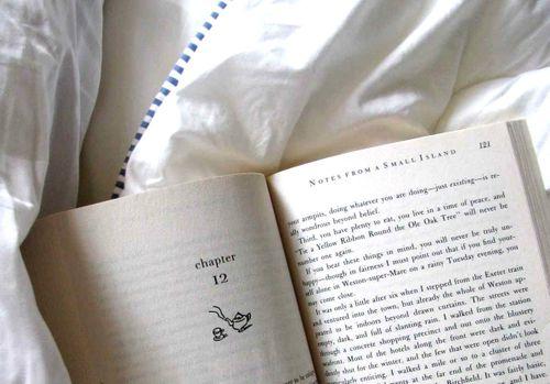 Book bed horizontal