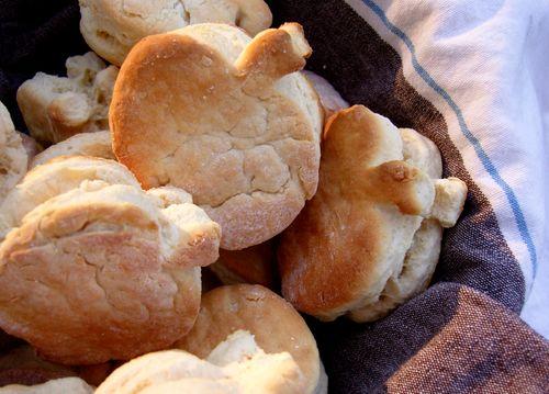 Pumpkin biscuits done 2