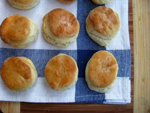 Baking powder biscuits 1