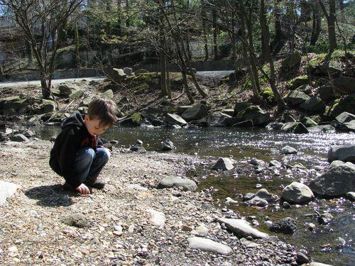 M selecting rocks