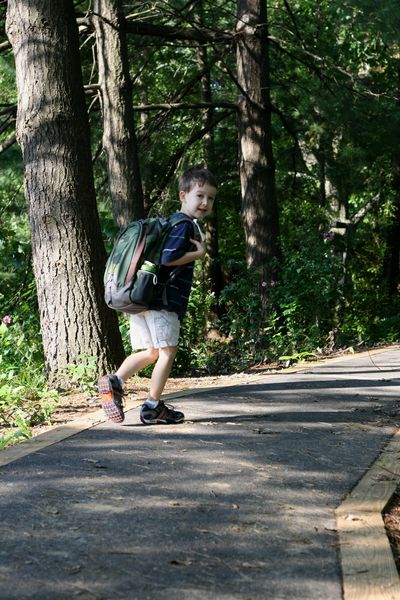 Up the hill to school